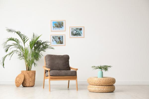 décorer appartement de location à fougères